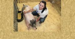 girl with hog in pen