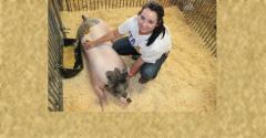girl with hog in pen