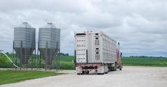 livestock trailer by two feed bulk bins