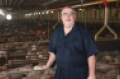Steve Quick's attention to detail and high standards for individual animal care have set a precedent throughout The Maschhoffs' organization.