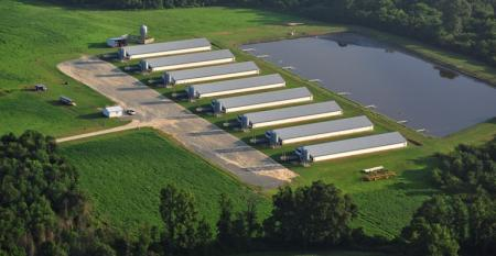 aerial photo of hog barns