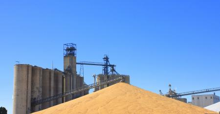 corn pile by grain elevator